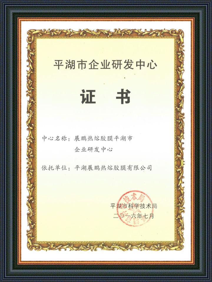 平湖市研发中心证书